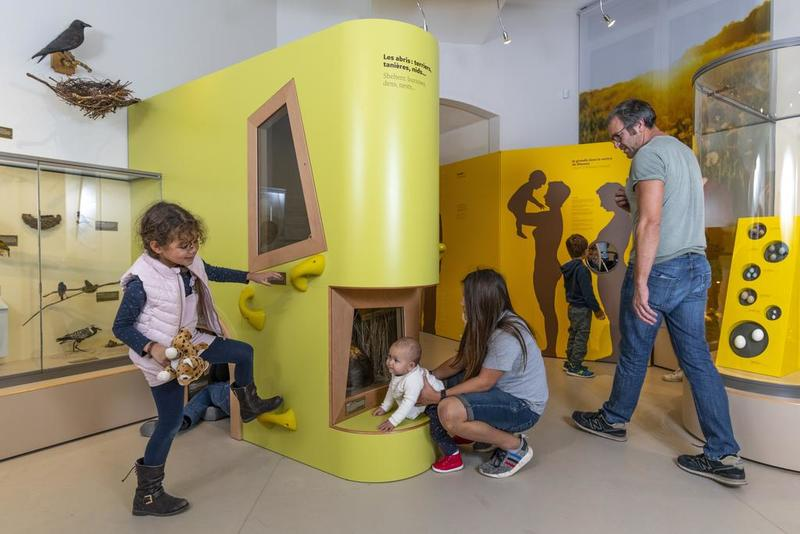 The Early years Museum of the Museum of natural history of Bordeaux is a space totally devoted to children under the age of 6. They discover semi-permanent exhibitions All babies.