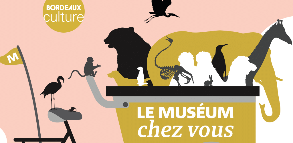 The Museum comes to you is a device of off-site workshops of the Museum of natural history of the Museum of Bordeaux - science and nature.