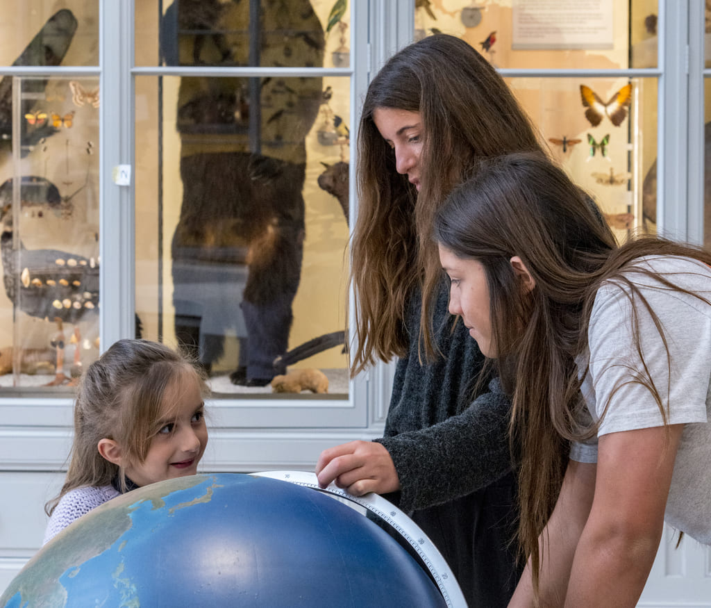 Discover events and rendez-vous of the Museum of natural history of Bordeaux – Science and nature