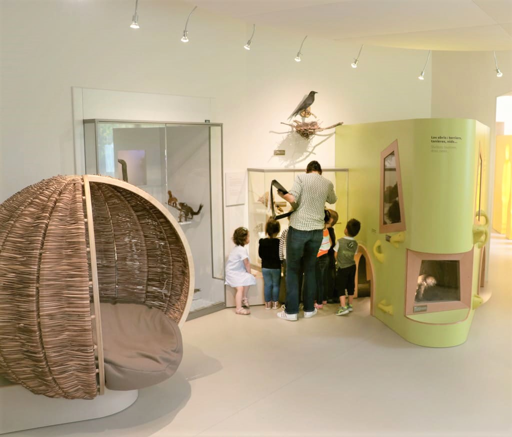 The Early years Museum is a space devoted to children under the age of six. In this space of the Museum of natural history of Bordeaux – Science and nature, they can discover the semi-permanent exhibition all babies.